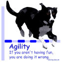 Agility Excuses: Are You Having Fun? design
